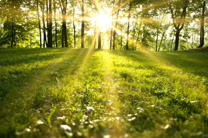 The Fantastic Outdoors Can Be Fully Experienced When Residing at Caravan Parks